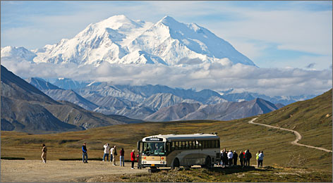 Peak experience: A tour bus stops at Stony Overlook in Denali National Park and Preserve so that visitors can take in a magnificent view of Denali/Mount McKinley. North America's tallest mountain towers nearly 4 miles high.