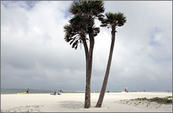 Fort De Soto Park's North Beach in Florida has been named America's number one beach by TripAdvisor.