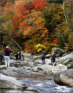 Fall foliage is serious business in New Hampshire. The state Division of Travel and Tourism will be using Twitter and Facebook to post updates and pictures.