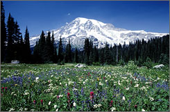 At Washington's Mount Rainier National Park, climate change could affect snow and ice levels, according to a report naming 25 parks in the USA that are threatened.
