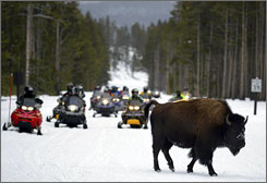 Noise - and its effect on wildlife - has been central to the long-running debate over snowmobiles in Yellowstone.