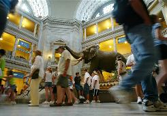 Vistors walk through the rotunda of the National Museum of Natural History of the Smithsonian Institution in Washington. Smithsonian museums saw a 19.4% increase in visitors in 2009.
