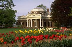 Monticello: Tulips are a spring hallmark of the home of Thomas Jefferson, the nation's third president. (Historical tidbit: He built the dome in 1800 after seeing the architecture in France.)