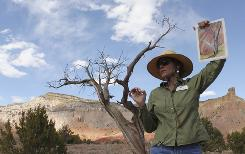"Ghost Ranch tour guide Karen Butts holds up a copy of Georgia O'Keeffe's ""Gerald's Tree I, 1937"" during a tour of the places the artist painted at Ghost Ranch, N.M."