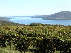 Wine and water country: Many of the region's 11 lakes, including Canandaigua, are surrounded with the vineyards that support more than 100 area wineries.