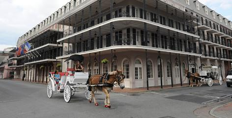 Picturesque: A mule-drawn carriage clops by the Inn on Bourbon. The French Quarter looks romantic, but it isn't particularly conducive to residential living.