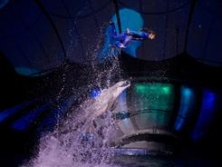 Trainer Lisa Mignogna is rocketed skyward by a dolphin during a rehearsal on March 24.
