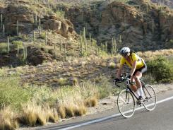 Cyclists love to bike down Mt. Lemmon near Tucson, AZ.
