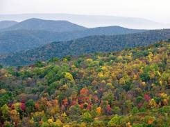 Trees display changing fall colors near the Skyline Drive's Point Overlook area in Shenandoah National Park in Virginia.