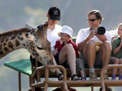 In Santa Rosa, Calif.:  You'll encounter giraffes and other African animals at Safari West.