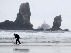 With Tillamook Head Lighthouse visible in the distance, a man searches for signs of razor clams while patrolling the surf at low tide on Crescent Beach at Ecola State Park in Cannon Beach, Ore.