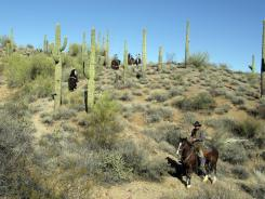 Dude ranches, such as Rancho de los Caballeros in Wickenburg, Ariz., still have horses and wranglers, but some are now offering options unheard of just a few years ago.
