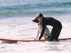 Loews Coronado Bay Resort offers surfing lessons for dogs.