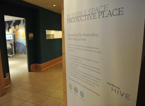 Project Hive Photo