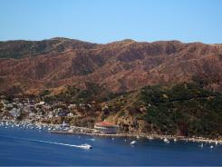 With or without ferry discounts, it's not difficult to find Catalina Island accomodation prices to fit even the tightest of budgets.
