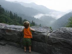 Great Smoky Mountains National Park is one of the few major American national parks that doesn't charge admission (and there's actually a deed restriction on the land saying that no toll or fee will ever be imposed).