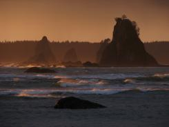 Sea stacks at Olympic National Park.