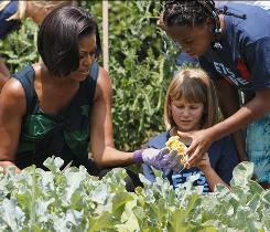 Model plot: Michelle Obama harvests vegetables in the White House garden with kids from nearby Hollin Meadows Elementary.
