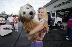 Mary Mouradian holds Charlie, a 5-month-old soft coat Wheaton terrier, before loading him in the SNIP (Spay Neuter Indiana Pets, Inc.) van to be neutered and microchipped.