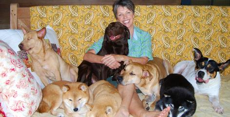 Jennifer Smith founded Noah's Arks Rescue, a South Carolina-based nonprofit that saves abused animals. Smith is surrounded by her three Shiba Inus, Gracie Lou, Daisy Bell and Hannah Sue, and rescued dogs Sammy, left, chocolate Lab mix Maggie, mixed-breed Jasper, and Riley.