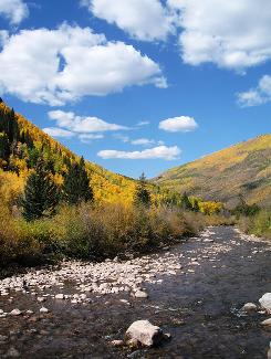 Fall colors near Vail, Colo., provide a beautiful view, but is the high-altitude air a problem for people with depression?
