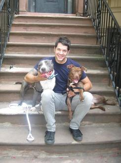 Dog trainer Robert Haussmann sits with dogs Jake, left, and Coco in New York City where he recently worked with a Brooklyn pit bull rescue group, Rubies Rangers.