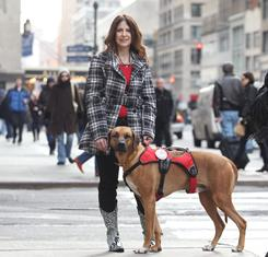 Wyatt, a Rhodesian Ridgeback with his owner Janice Wolfe in New York.