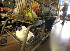 Researchers say they actually found more fecal bacteria on grocery cart handles than you would typically find in a bathroom.