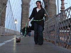 Lauren Esposito and Lady Liberty, a Yorkshire terrier, did a trial run across the Brooklyn Bridge in New York recently in preparation for The Pup Crawl, a fundraiser and awareness-builder, that will take place Saturday night.