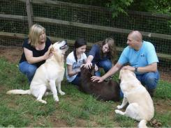 Charlie and Sandy Petrizzo and daughters Kristen, 14, and Melissa, 16, play with their original breeding Labs, named Roger, Trendy and Gracie.