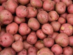 Purple ones, in particular, have high amounts of antioxidants, although red-skinned or white potatoes may have similar effects.