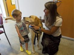 Dean Ray, 4, greets Murray, a golden retriever/lab mix, who works with Traci Woods, the family experience director for Florida Hospital for Children.