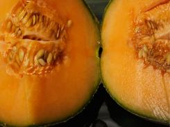The Centers for Disease Control and Prevention reported that cantaloupe from Jensen Farms of Holly, Colorado have the bacterium listeria and so far, the outbreak has sickened more than 70 people, and killed up to 16, in 18 states.