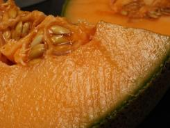 The Centers for Disease Control and Prevention reported that cantaloupe from Jensen Farms of Holly, Colorado have the bacterium listeria.