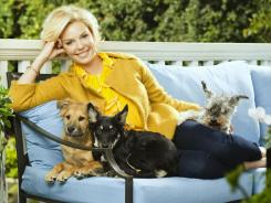 Katherine Heigl with some of her Dogs: Brown: Tambour, 4 month old male shepard rescue; Black: Flora May 4 month old female; Romeo, 15 yr old mini schnauzer.