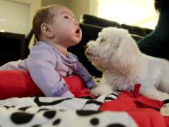 In this photo, Latte, a five-year-old poodle, plays with three-month-old Aila Barrett at their home in Tustin, Calif.