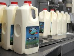 Raw milk is bottled at a dairy in Pennsylvania that was identified as the source of a campylobacter outbreak.