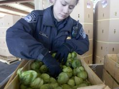 A Customs and Border Protection Agricultural Specialist inspects boxes of vegitables at the Mariposa Port of Entry in Nogales, Ariz., located along the border with Mexico.