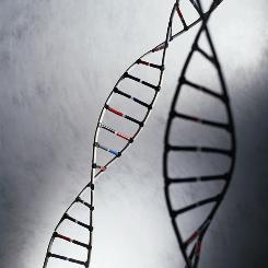 Only about half the participants said they'd seek medical testing in the future because of their DNA results.