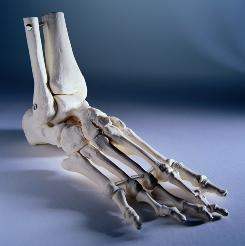 Foot disorders can cause problems with mobility.